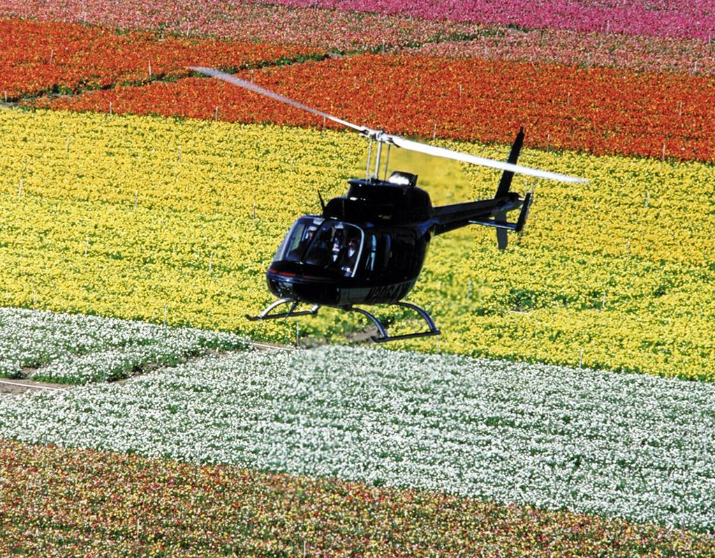A Bell 206 helicopter surveys a field. NAAA Photo