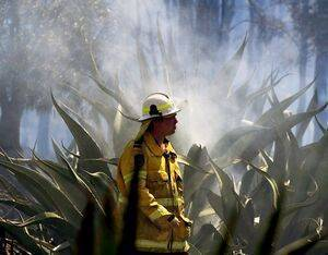 Australia's bushfires burned through an estimated 18 million hectares of bushland and destroyed 2,900 homes. Ned Dawson/NSW Rural Fire Service Photo